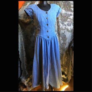 1980's Denim Full Skirt Slim Waist Dress, Sz 8